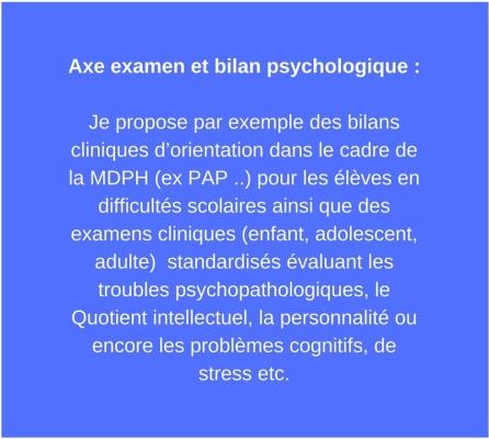 Axe examen et bilan psychologique _Je propose par exemple des bilans cliniques d_orientation dans le cadre de la MDPH (ex PAP ..) pour les élèves en difficultés scolaires ainsi que