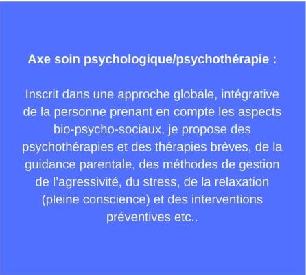 Axe examen et bilan psychologique _Je propose par exemple des bilans cliniques d'orientation dans le cadre de la MDPH (ex PAP, PPRE ..) pour les élèves en difficultés scolaires ainsi que